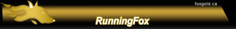 Running Fox Resource Corporation (TSXV:RUN) CEO Interview
