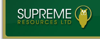 Supreme Resources Ltd. (OTCBB:SPRWF) (TSXV:SPR) CEO & President:Allan Levien